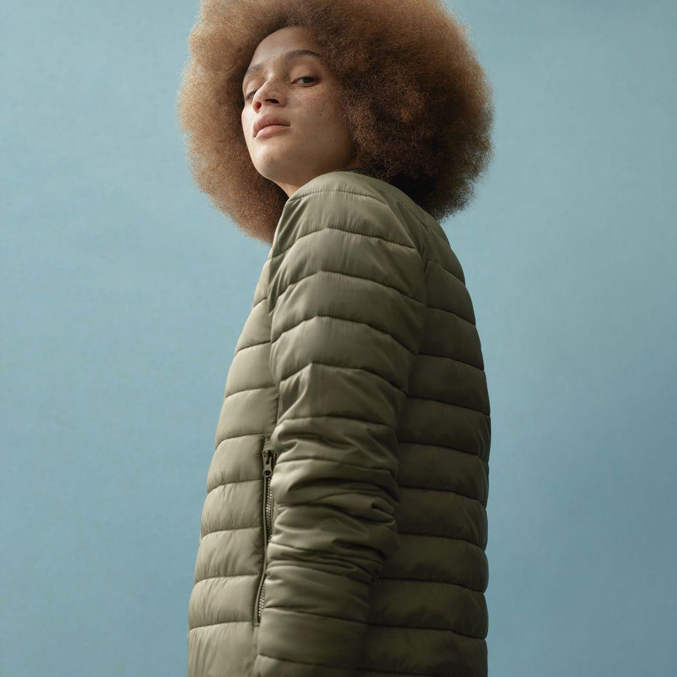 everlane sustainable clothing